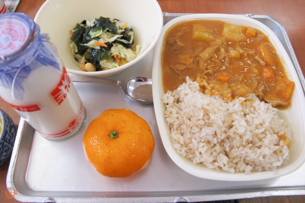 Rice and Japanese curry with potato, carrots, onion and meat. To the left is a side dish of cabbage, carrot, beans and wakame seaweed, along with a mandarin and a bottle of milk.