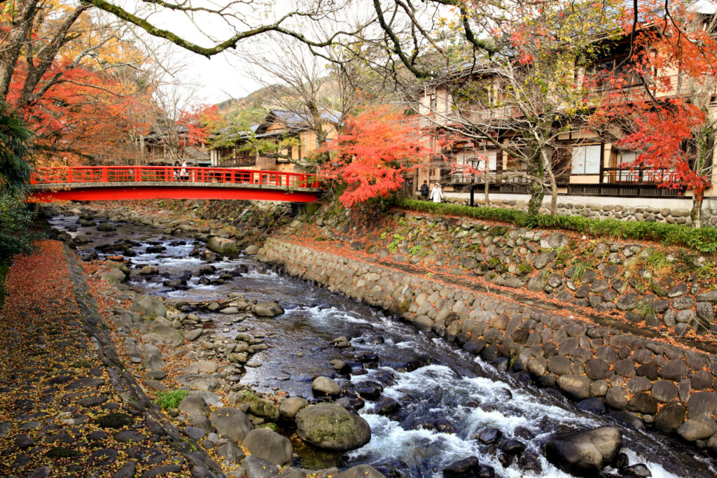 The Katsura River with its many rocks appears like a babbling brook in parts (like it does here). There is a quaint red bridge over the water and some of the deciduous trees lining the bank have turned red. Japanese-style houses can be seen through the trees along the street running parallel to the river..