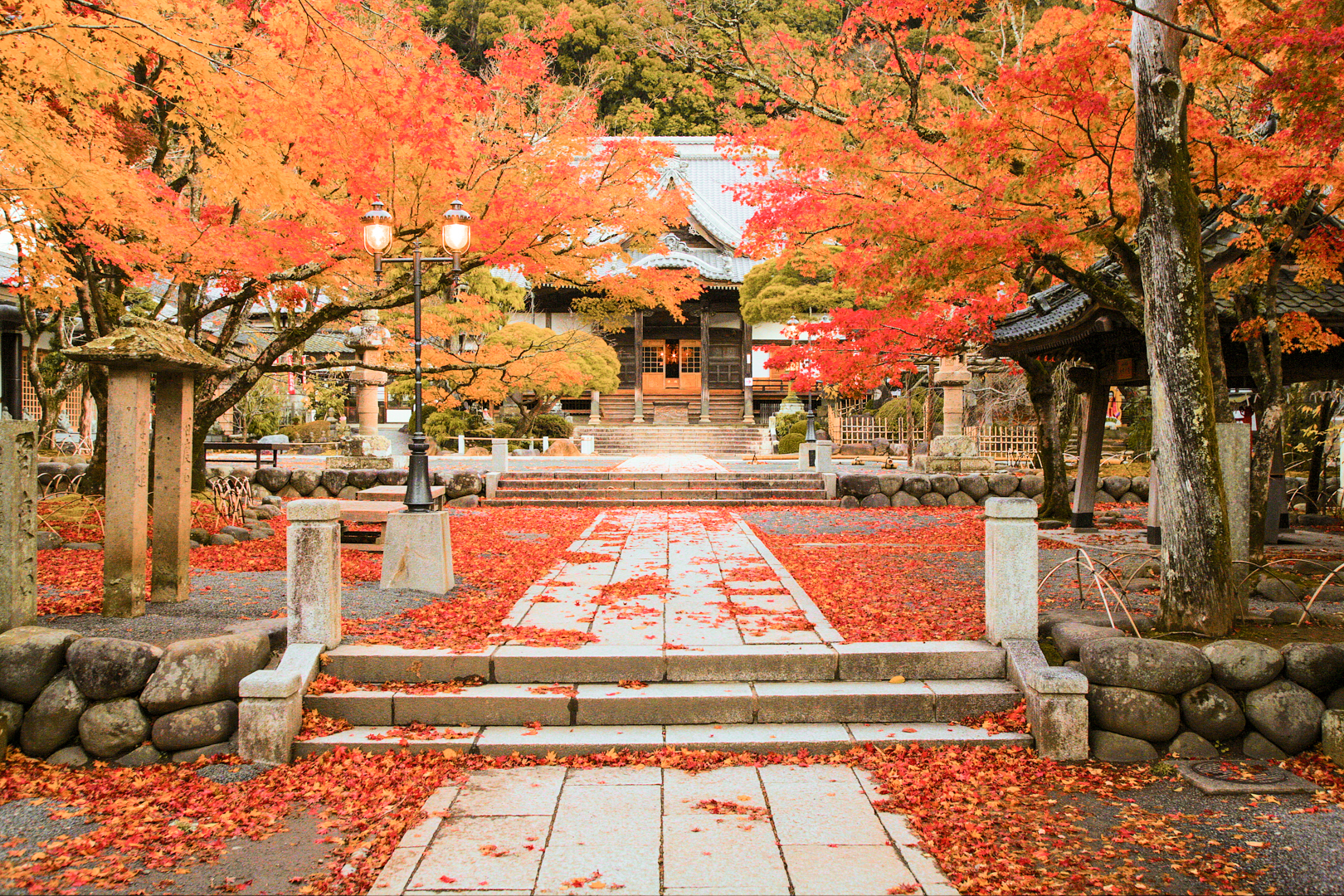 The tree-lined walkway leading up to Shuzenji Temple, with the temple in the background. The photo has been taken in fall with the leaves a vivid red and orange, and many leaves already scattered on the ground, creating a very bright contrast with the temple and stone walkway.