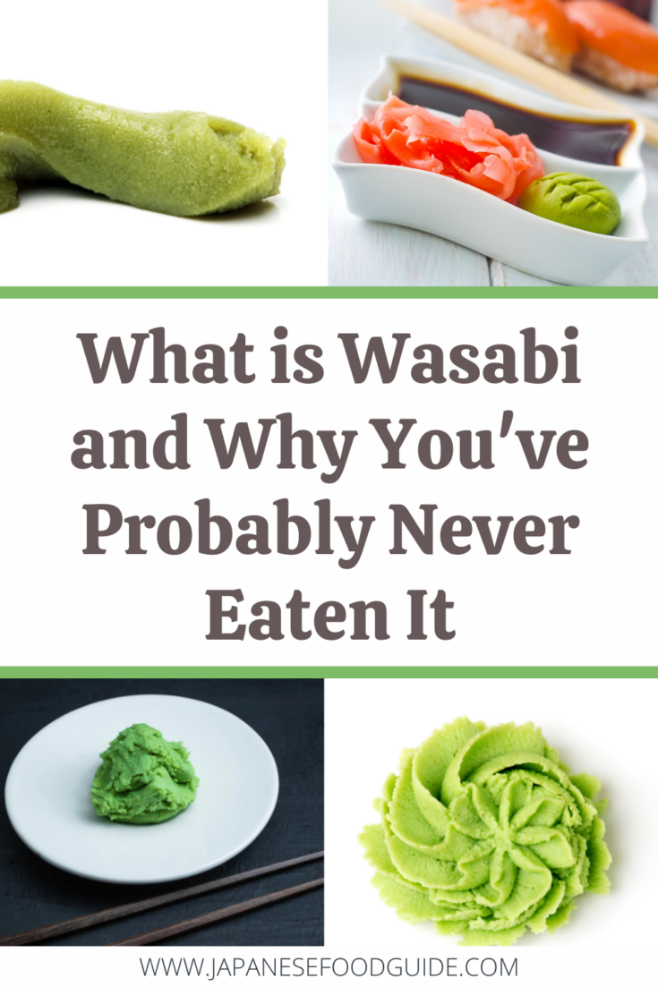 Pin for this post - What is Wasabi and Why You've Probably Never Eaten It