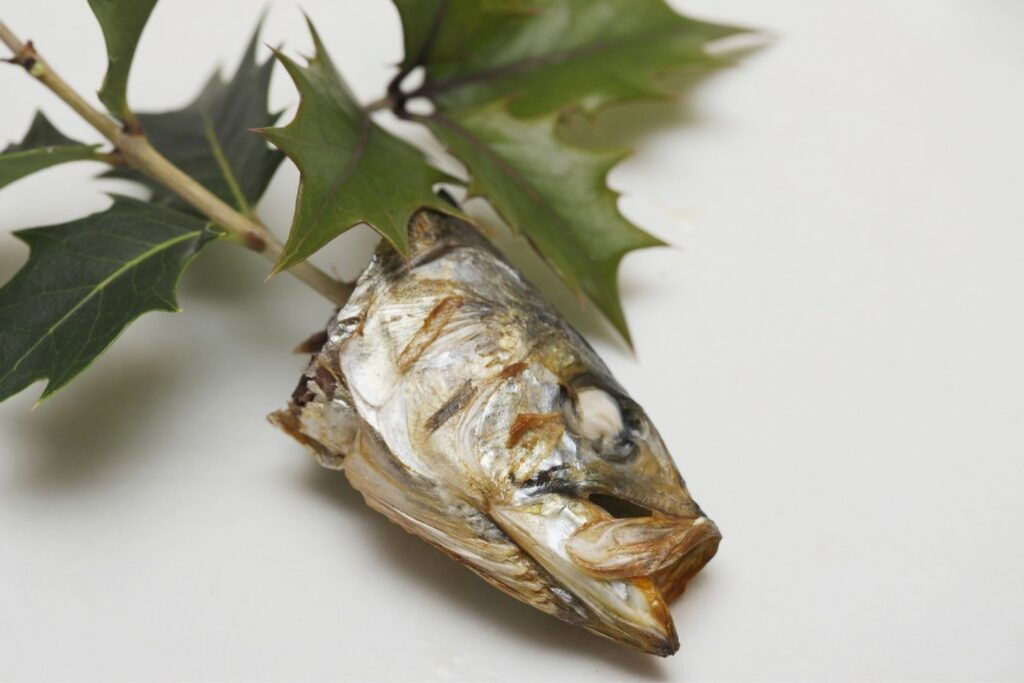 A grilled sardine head impaled on a holly branch (Hiiragi Iwashi) with green foliage on a white surface.